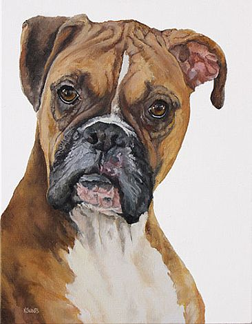 Zoey - Boxer by Karin Snoots
