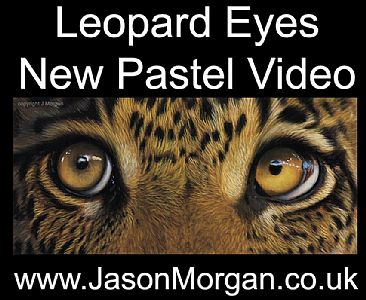 Pastel Video - drawing -  by Jason Morgan