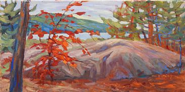 Maple in Camp - landscape by Kathy Haycock