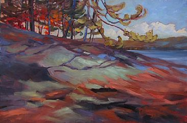 Canadian Shield Patterns - Algonquin Park landscape by Kathy Haycock