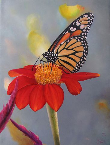 Monarch - Butterflies by Jerry Venditti