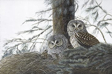 New Hope -  Nesting Barred Owls and chick by Patricia Mansell