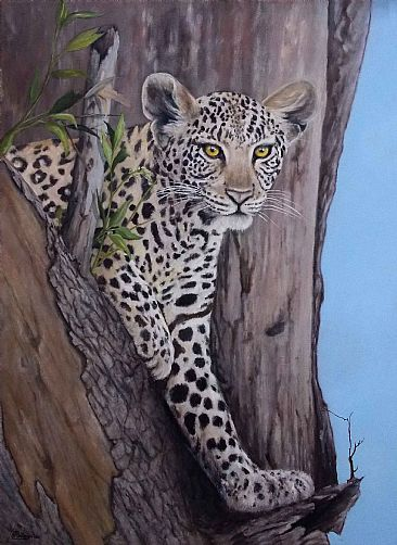 On guard - Leopard by Paula Wiegmink