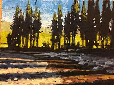 Manning Park Dusk -  by Bryan Coombes