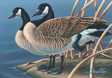 Soul Mates - Canadian Geese, Goose by Jerry Ragg