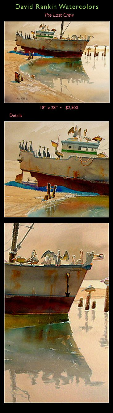 The Last Crew - Pelicans & Cormorants on old ship. by David Rankin