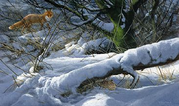 Winter hiding place - Fox and wookcock by Jeremy Paul