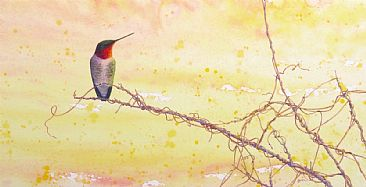 New Dawn - Ruby-throated Hummingbird by Beatrice Bork
