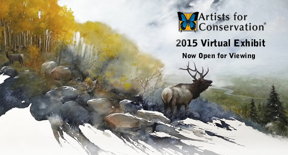 Artists for Conservation presents the 2014 Virtual Exhibit